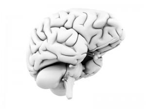 Epilepsy Test